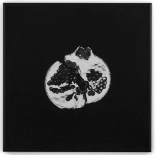 Pomegranate, from Afterlove series, 2015