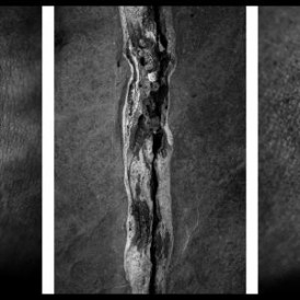Triptych (II), from 'CHRONOS' series