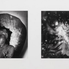 Diptych II, from Afterlove series, 2015