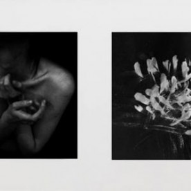 Diptych I, from Afterlove series, 2015